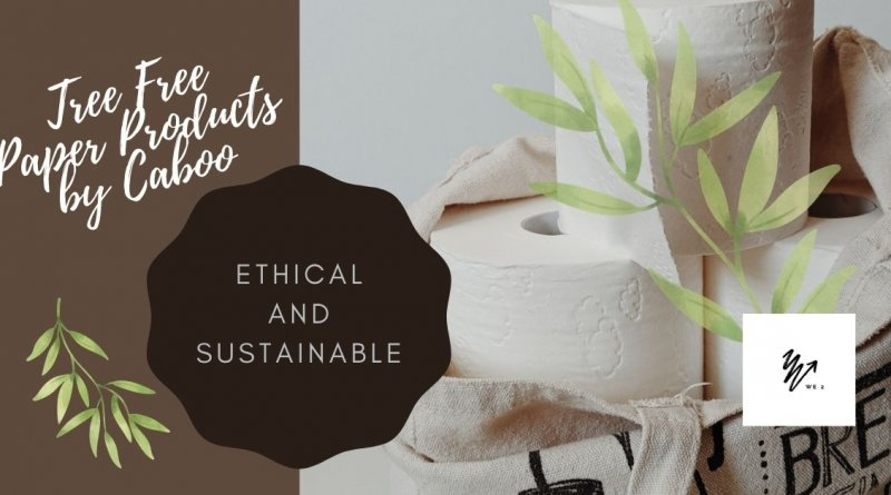 Sustainable Paper Products