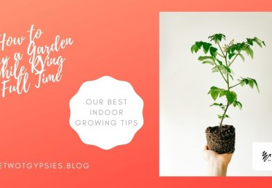 How to Grow a Garden While RVing Full-Time |Our Best Indoor Growing Tips